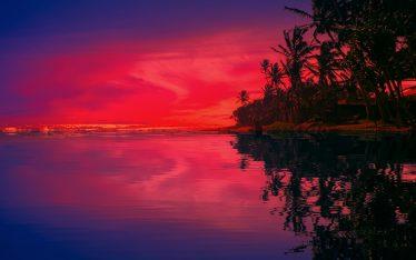 hikkaduwa reflection-brian roe